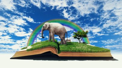 slon ksiazka 15702903_l